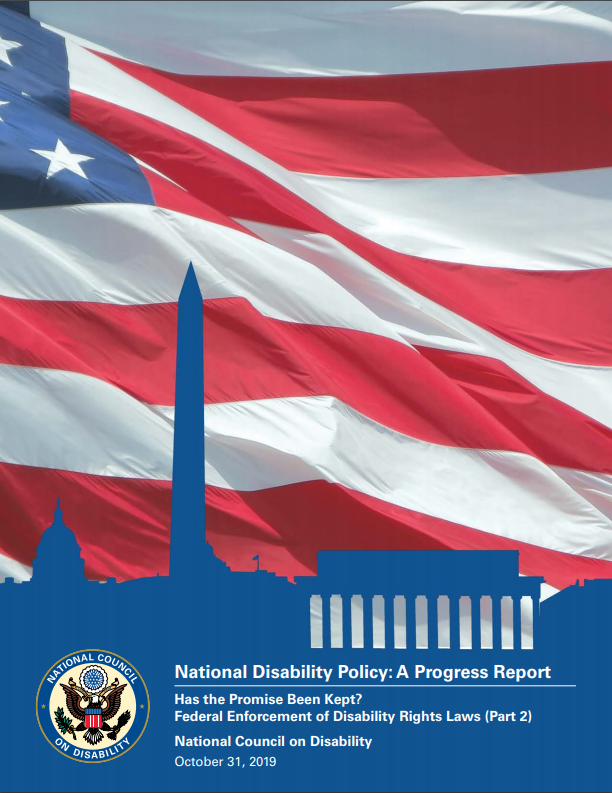 NDP Report Cover showing American Flag and buildings in silhouette